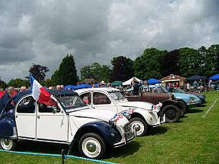Motor Cars on display